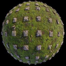 Thumbnail: Mossy ground