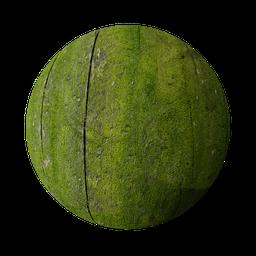 Thumbnail: Moss wood