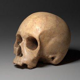 Thumbnail: Old human skull modell