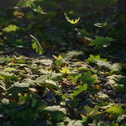 Thumbnail: Leaves