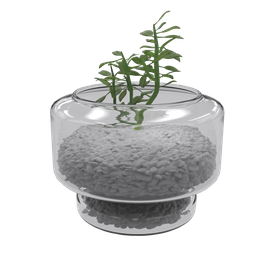 Thumbnail: Glass Jug and Vegetation-02