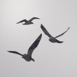 Thumbnail: Flat bird