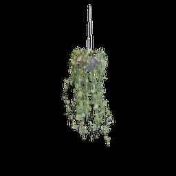 Thumbnail: Ceiling Plant