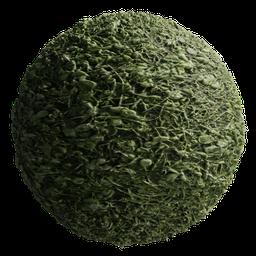 Thumbnail: Grass 01