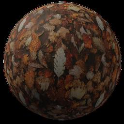 Thumbnail: Autumn leave ground