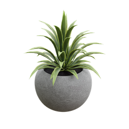 Thumbnail: Concrete pot with plant