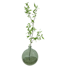 Thumbnail: Glass jug vegetation