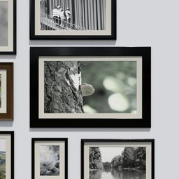 Thumbnail: Photo frame 'anyframe' with a mushroom on a tree