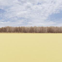 Thumbnail: Treeline of Autumn Backdrop 002