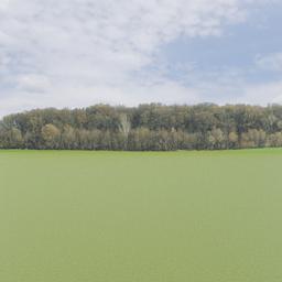 Thumbnail: Treeline of Autumn Backdrop 006 a